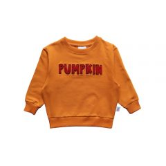 Red pumpkin sweater